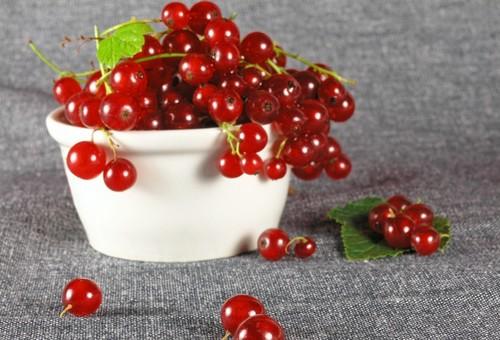 樱桃的功效与作用,樱桃的营养价值[图文]