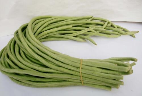 豇豆的功效与作用及营养价值